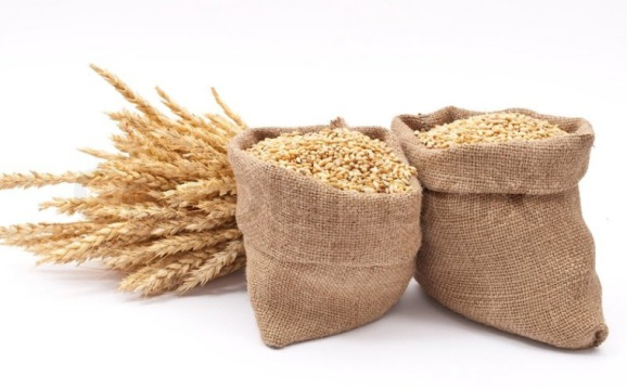 1269148-sacks-of-wheat-grains